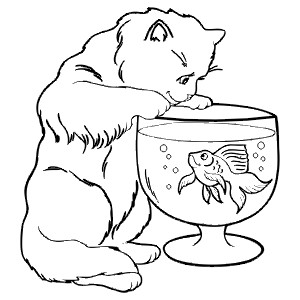 CAT_FISH - Colouring Page