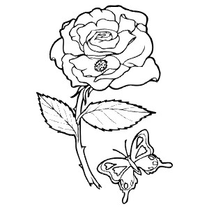 ROSE - Colouring Page